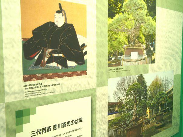 Explanation of Iemitsu Tokugawa