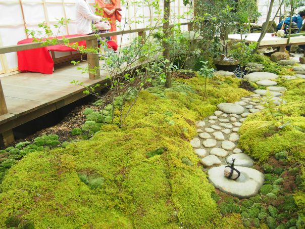 Japanese Garden & Tea Space