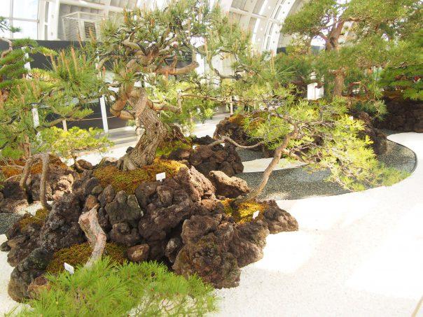 Japanese Garden in front of Saitama-Shintoshin Station