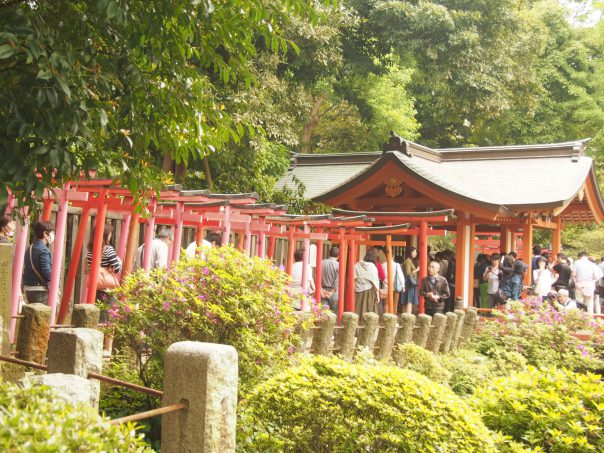 Otome Inari and 1000 Torii Shrine Gates