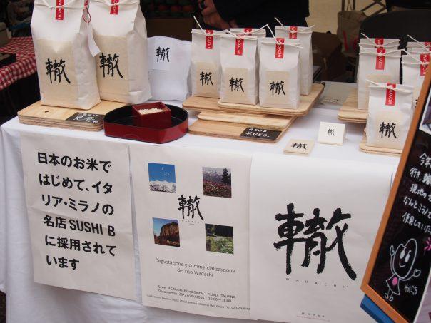 Organic Rice Wadachi