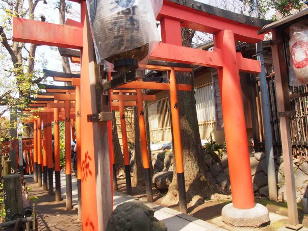 Torii Shrine Gate in Ueno Park