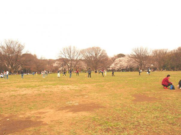 Center of Yoyogi Park
