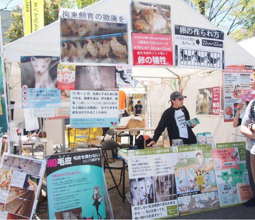 Animal Rights Center