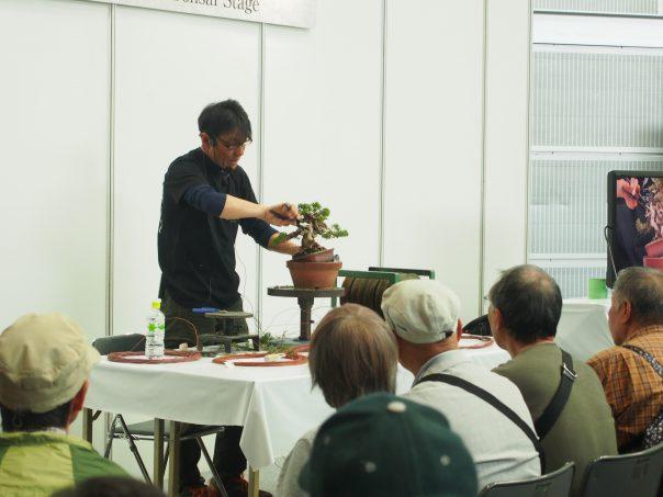apan Shohin Bonsai Stage