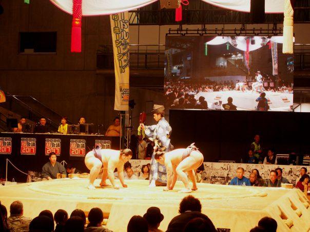 Sumo Wrestling Match