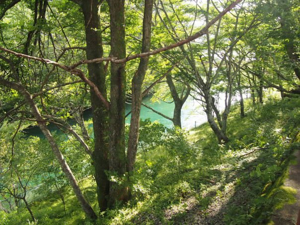 Path to Chuzenji Lake