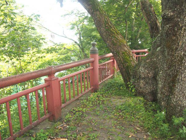 Path to Chuzenji Lake