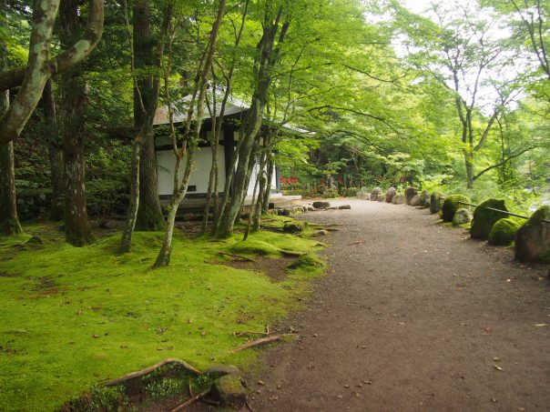 Line of Jizo ahead