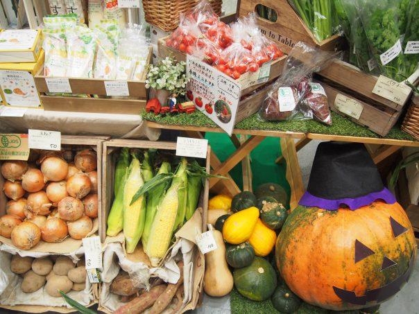 Organic Vegetables of Kodawariya