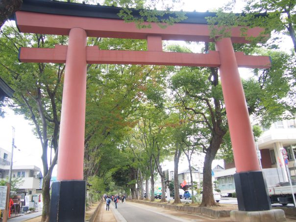 Shrine Gate of Hikawa shrine