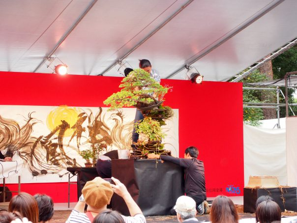 Bonsai Performance by Masashi Hirao