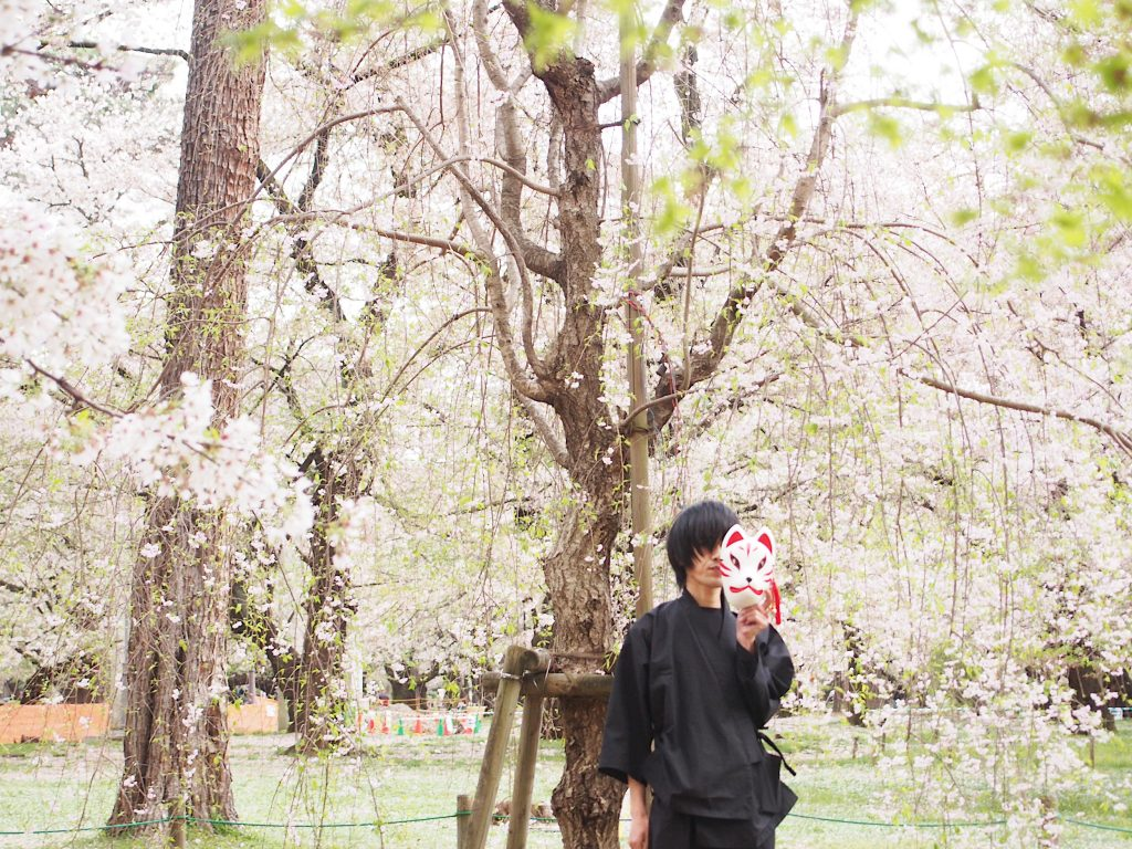 Profile Photo in Samue with Sakura in the background